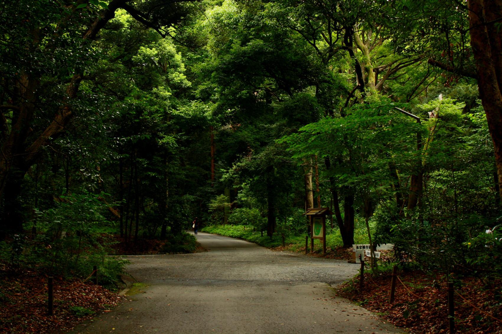 parc_yoyogi_japon