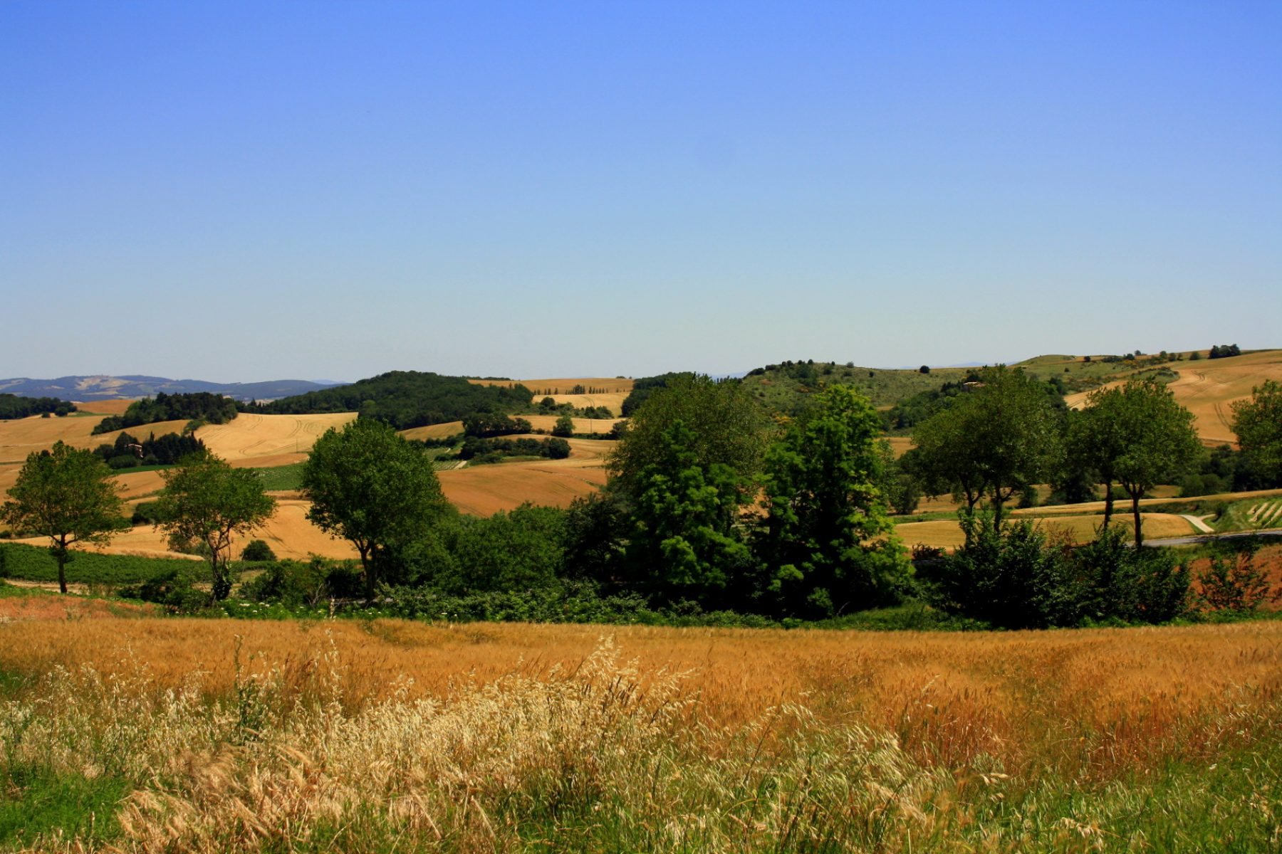 Campagne Languedoc-Roussillon